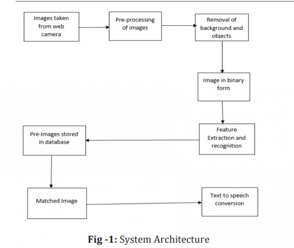 Architecture of our model
